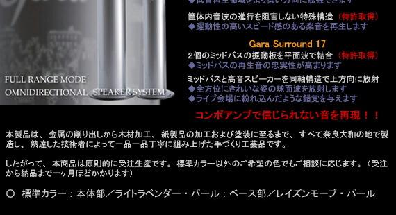 GARA Surround