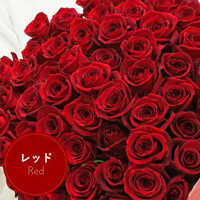 【12〜3月】赤バラ