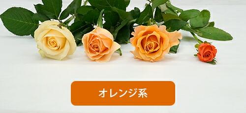 オレンジ系色の比較