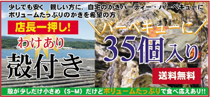わけあり広島産殻付き 35個入り