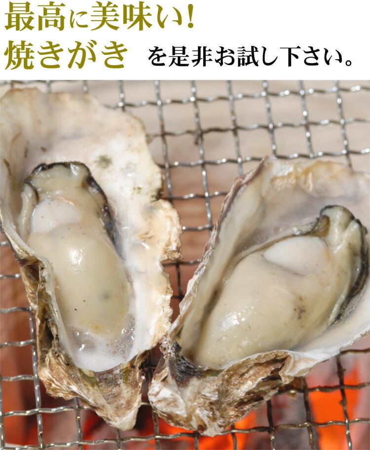 広島生かき 殻付き