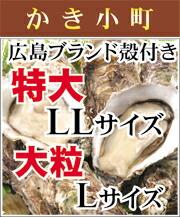 広島かき小町殻付きLサイズ
