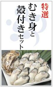 広島産生牡蠣 むき身と殻付かきのセット 贈り物に最適です