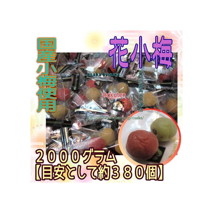 ZRヨネヤマ 2000グラム【目安として約380個】  花こうめ ×1袋 +税 【fu】