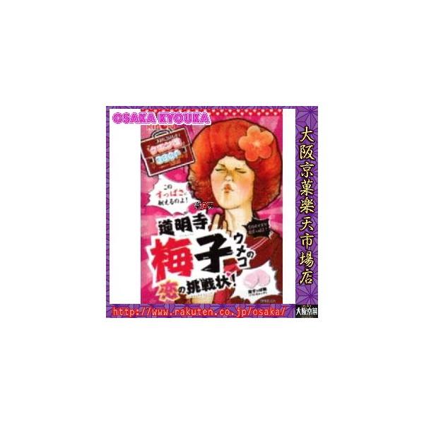 【メール便送料無料】ZRリボン 70G 道明寺梅子の恋の挑戦状×6袋 +税 【ma】