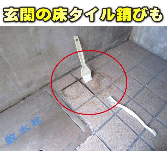 サビ取り剤 サビ落とし 玄関タイル 床タイル さび落とし