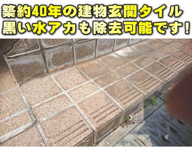 タイル 汚れ取り剤 水垢 水垢落とし 玄関 エントランス 床 水垢除去