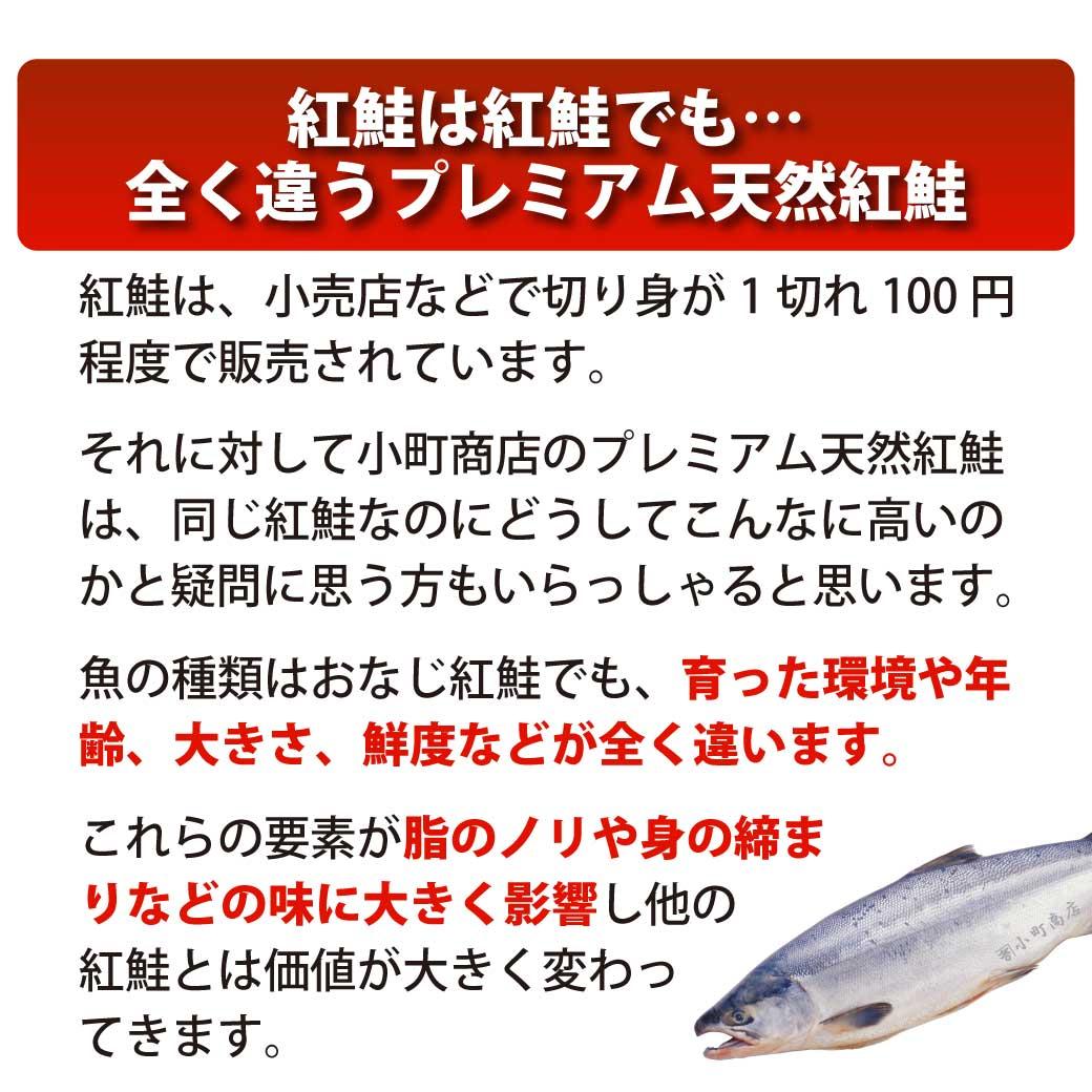 紅鮭は、ベニサケでも全く違う送料無料 プレミアム天然紅鮭