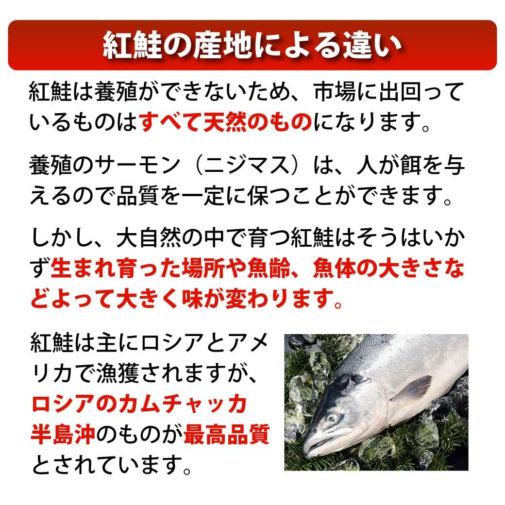 大自然で育つ天然鮭の中で脂のりのあるプレミアム天然紅鮭