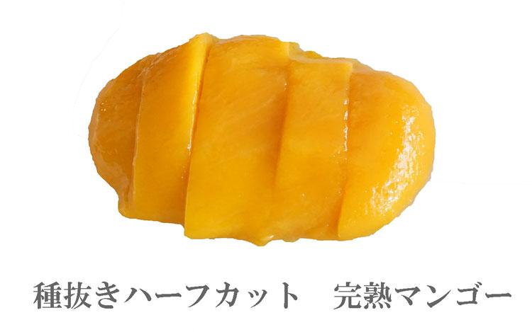 木なり完熟冷凍マンゴー
