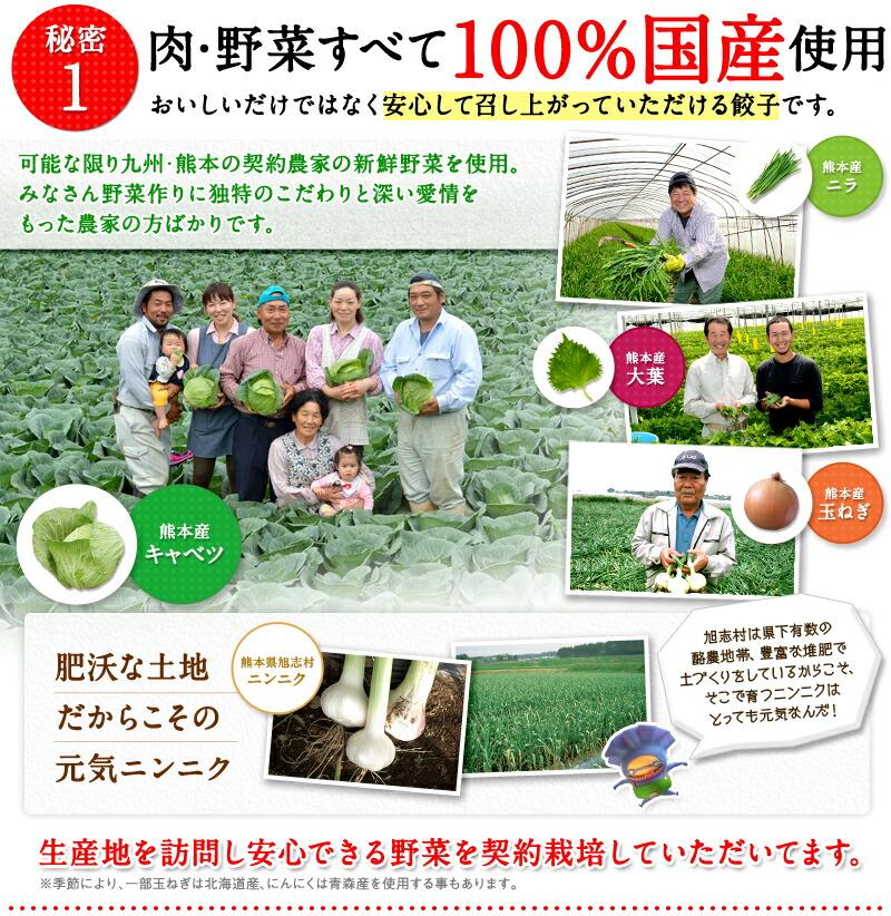 秘密1.肉・野菜すべて100%国産使用