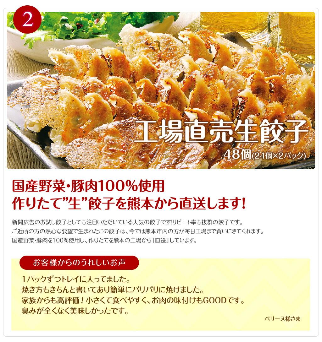 工場直売生餃子 48個(24個×2パック)