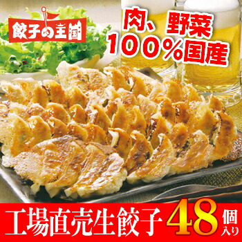 ☆お中元☆人気の餃子食べ比べセット