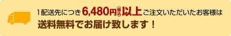 1配送先につき5250円以上ご注文で送料無料!