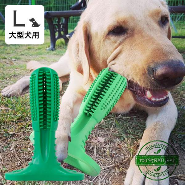 代金引換不可 犬用歯ブラシ 犬 歯磨き 歯みがき デンタルケア おもちゃ Lサイズ 大型犬用