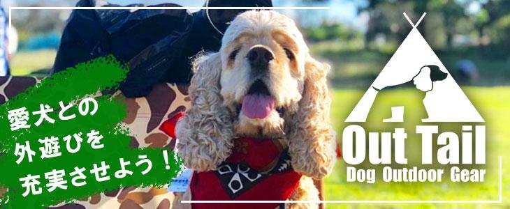 愛犬との外遊びを充実させよう!