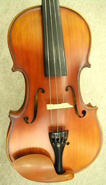 adult beginner violin