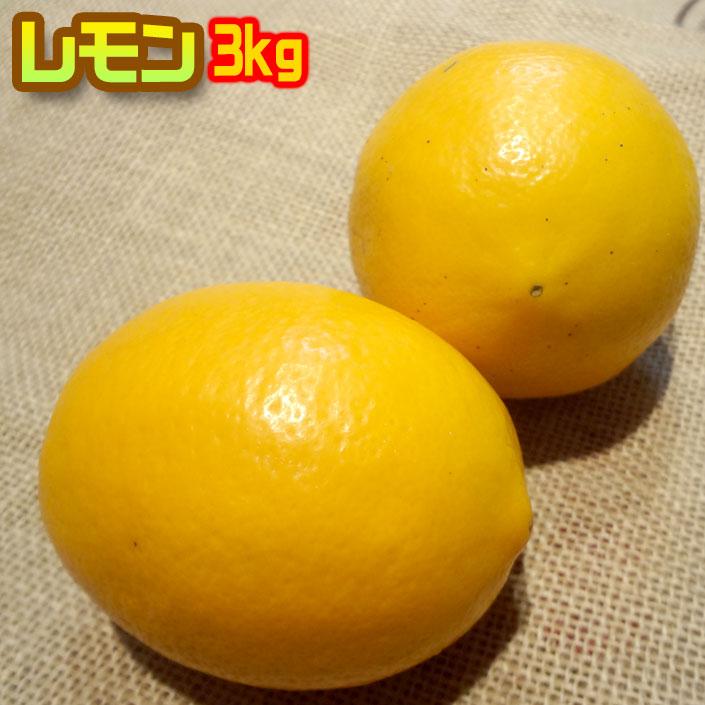 防腐剤不使用 国産レモン 3kg 防腐剤不使用  熊本県産 わけあり 送料無料