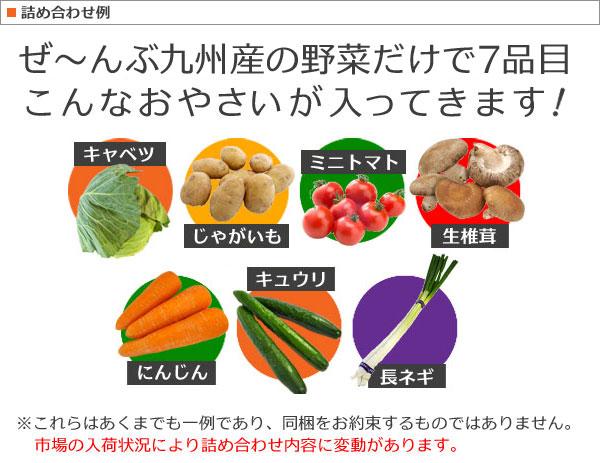 おまかせ野菜7品セット詰め合わせ例
