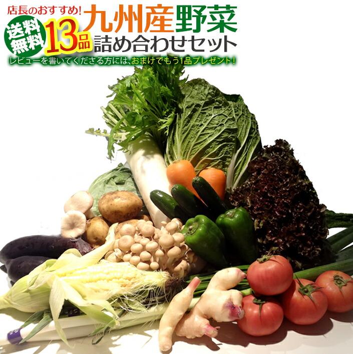 九州産野菜【15品】おまかせ詰め合わせセット