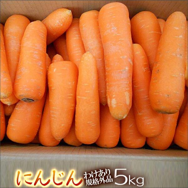 【わけあり】熊本県産 農薬不使用人参5kg箱【規格外品】