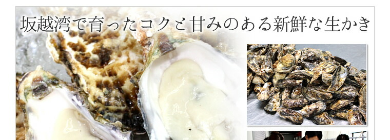 Oyster Sisters 坂越産生かき