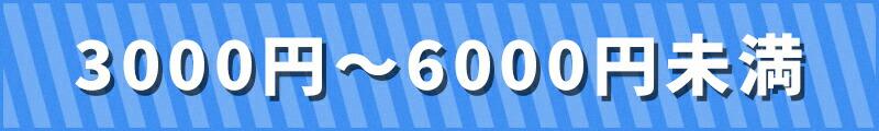 3000以上6000未満