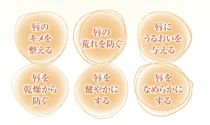 オゾンリップクリームの特徴 口コミ