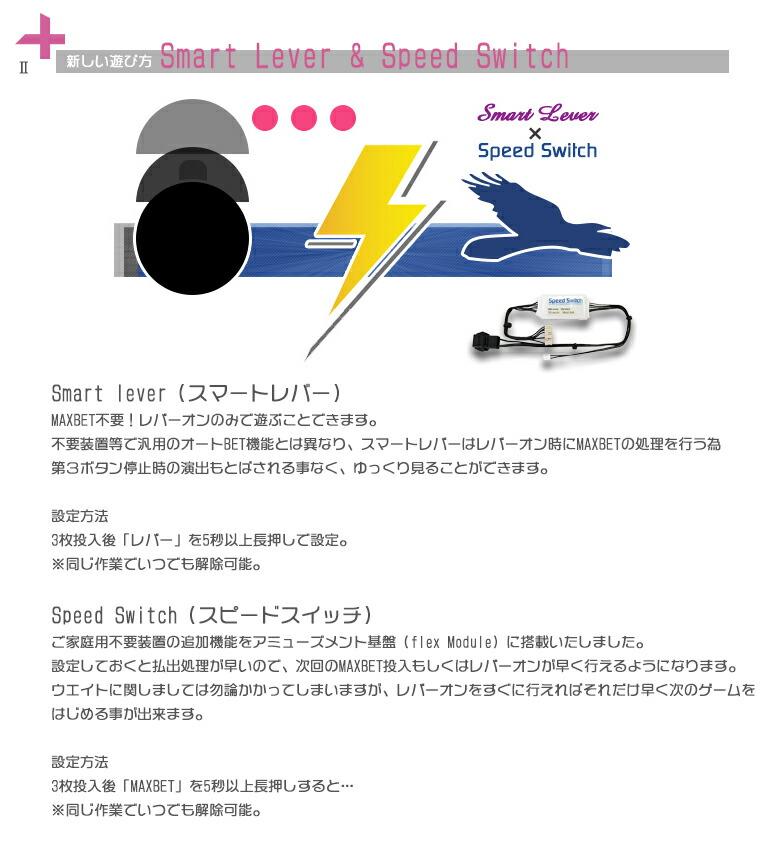 スピードスイッチ&スマートレバーの詳細