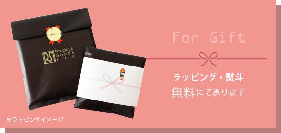 ラッピング袋+熨斗