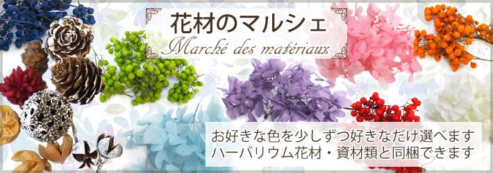 ハーバリウム花材マルシェ