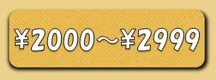エスニックファッション 2999円までの商品