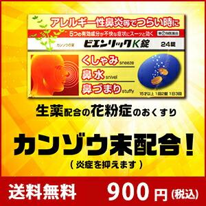 ビエンリックK 送料無料900円