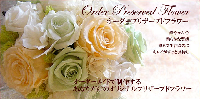 orderpr_main.jpg