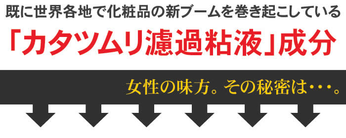 【dendenカタツムリフェイスマスク 10枚セット】