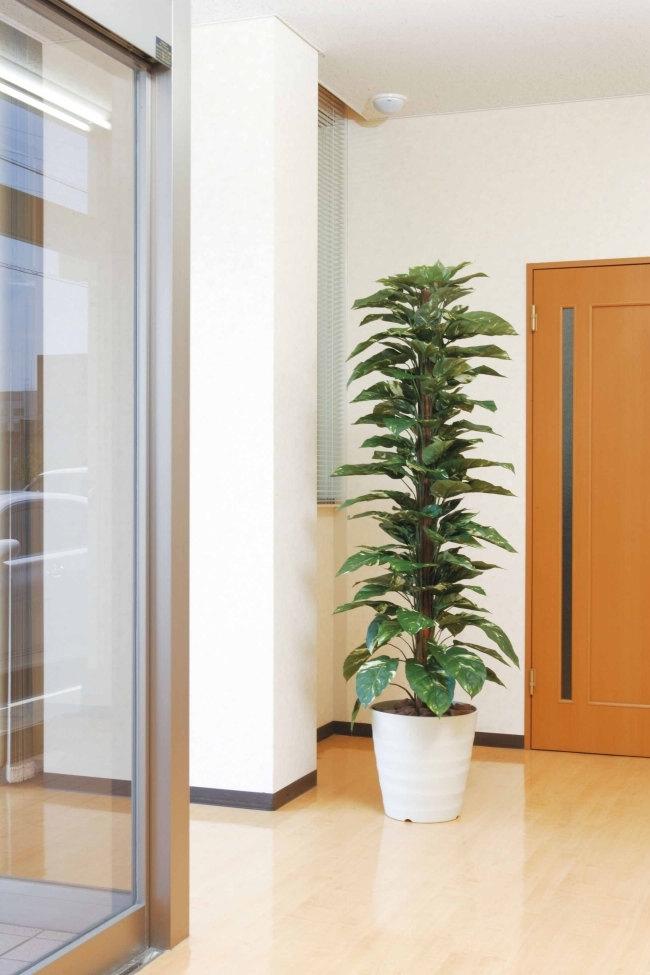 光触媒 ジャイアントポトス 1.8m【インテリアグリーン 人工観葉植物】