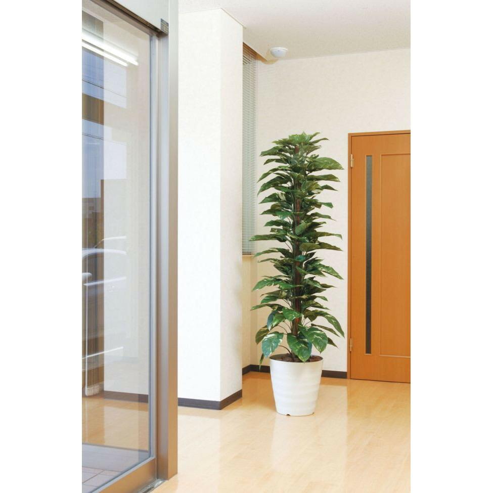 光触媒 光の楽園ジャイアントポトス 1.8m【インテリアグリーン 人工観葉植物】