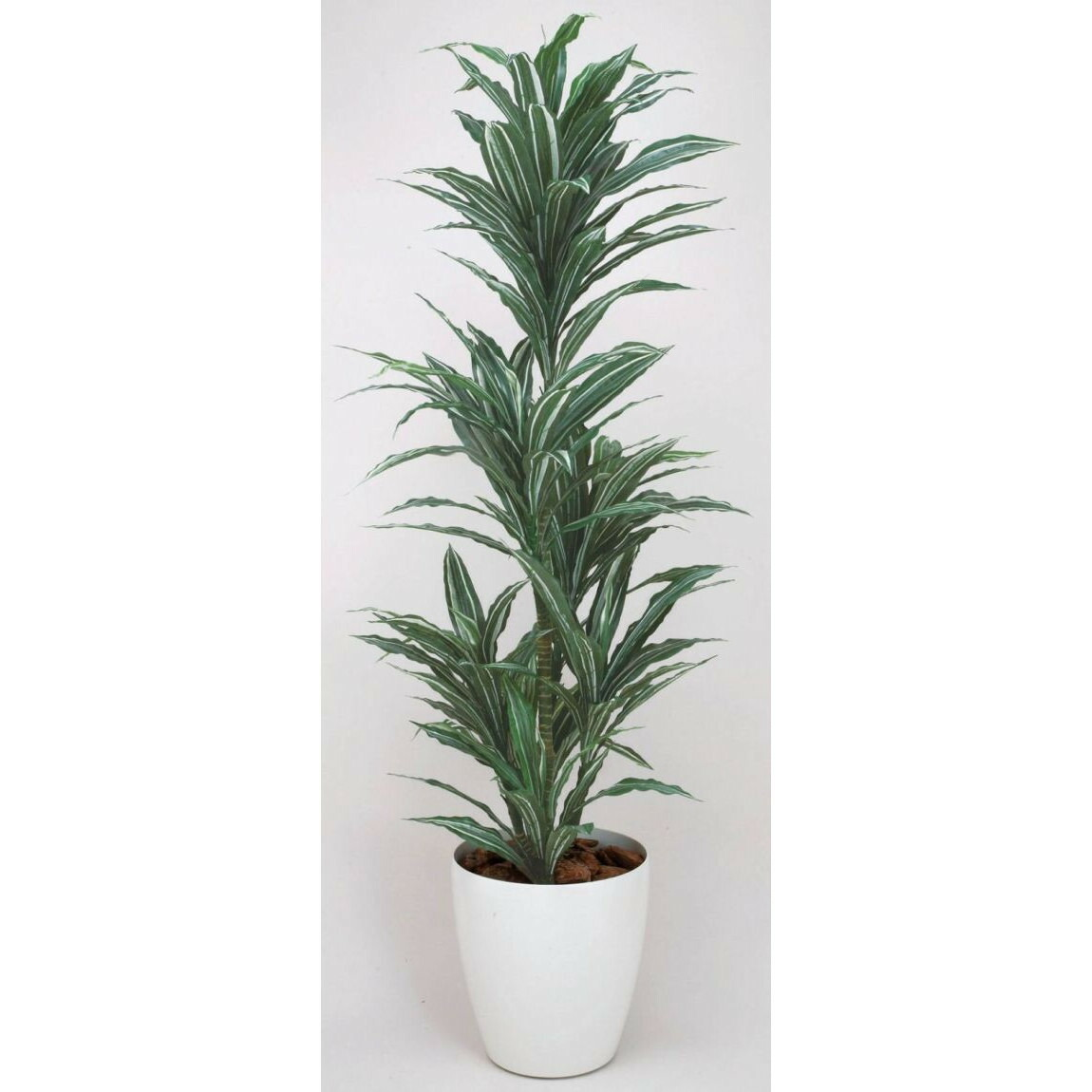 光触媒 光の楽園ワーネッキー 1.8m【インテリアグリーン 人工観葉植物】
