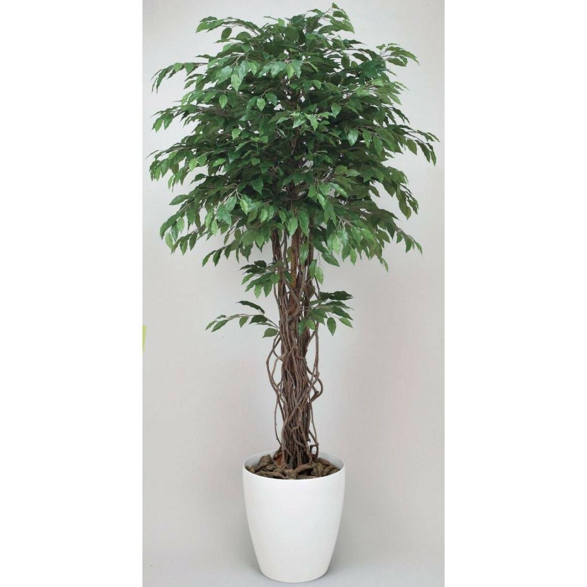 光触媒 光の楽園ベンジャミンリアナ 1.8m【インテリアグリーン 人工観葉植物】