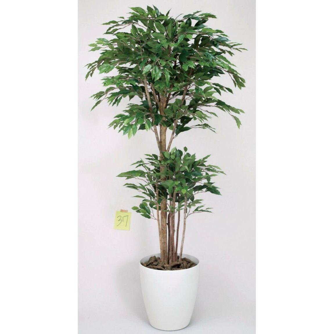 光触媒 光の楽園トロピカルベンジャミン 1.6m【インテリアグリーン 人工観葉植物】