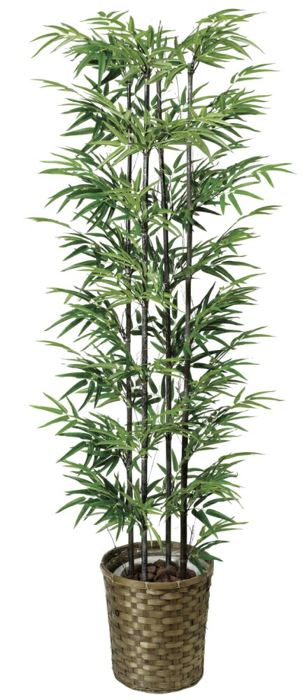 光触媒 光の楽園 黒竹 1.6m 【インテリアグリーン 人工観葉植物】