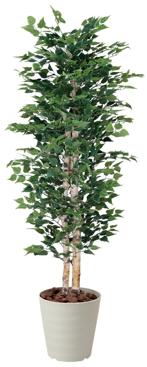 光触媒 光の楽園白樺 1.8m【インテリアグリーン 人工観葉植物】