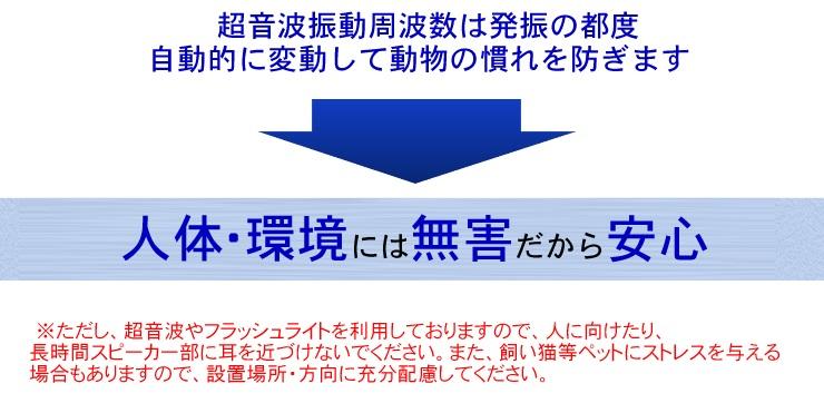 ij_anb_03_v2_4_3.jpg