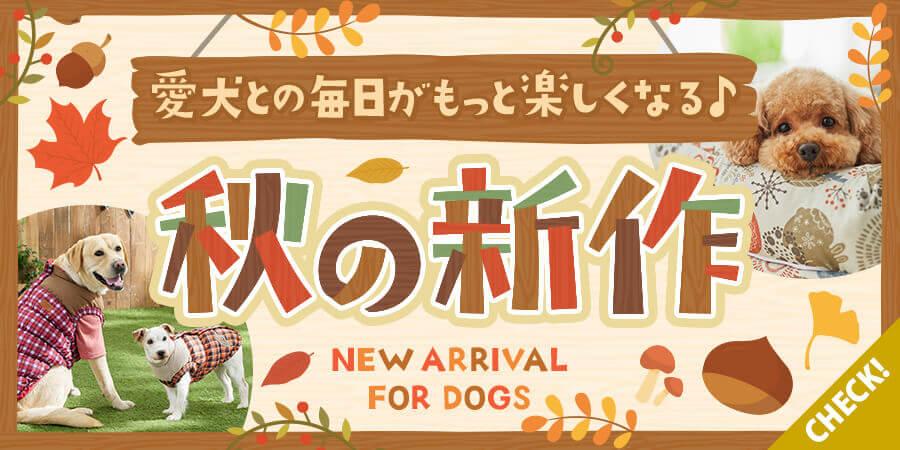秋の新作犬