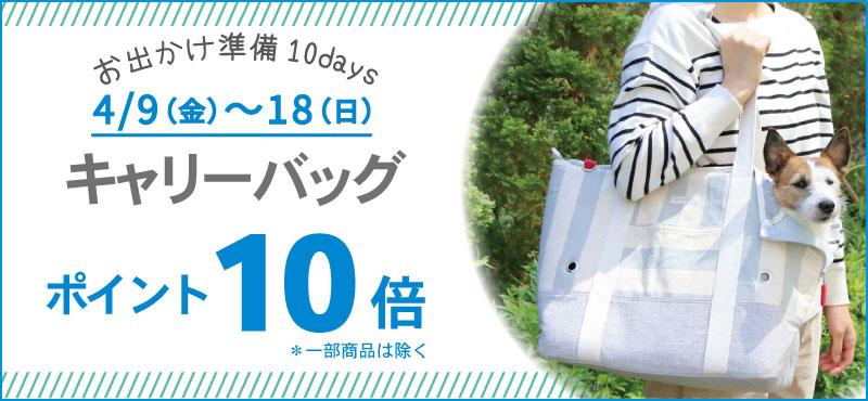 10DAYSキャリーP10