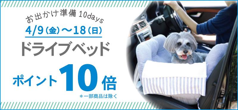 10DAYSドライブP10