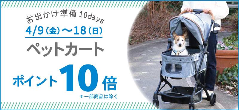 10DAYSカートP10