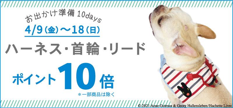 10DAYS犬具P10
