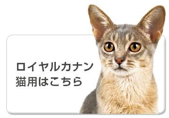 食事療法食ロイヤルカナン猫用