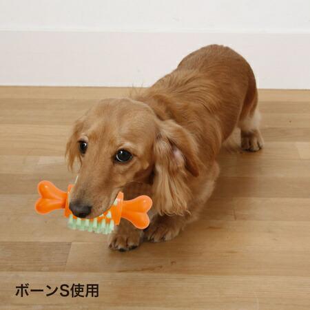 ペティオPetioペット歯ブラシTOYボールは楽しく遊んでしっかり歯みがきできます